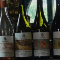 etna-wine-tour13