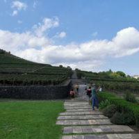 etna-wine-tour6