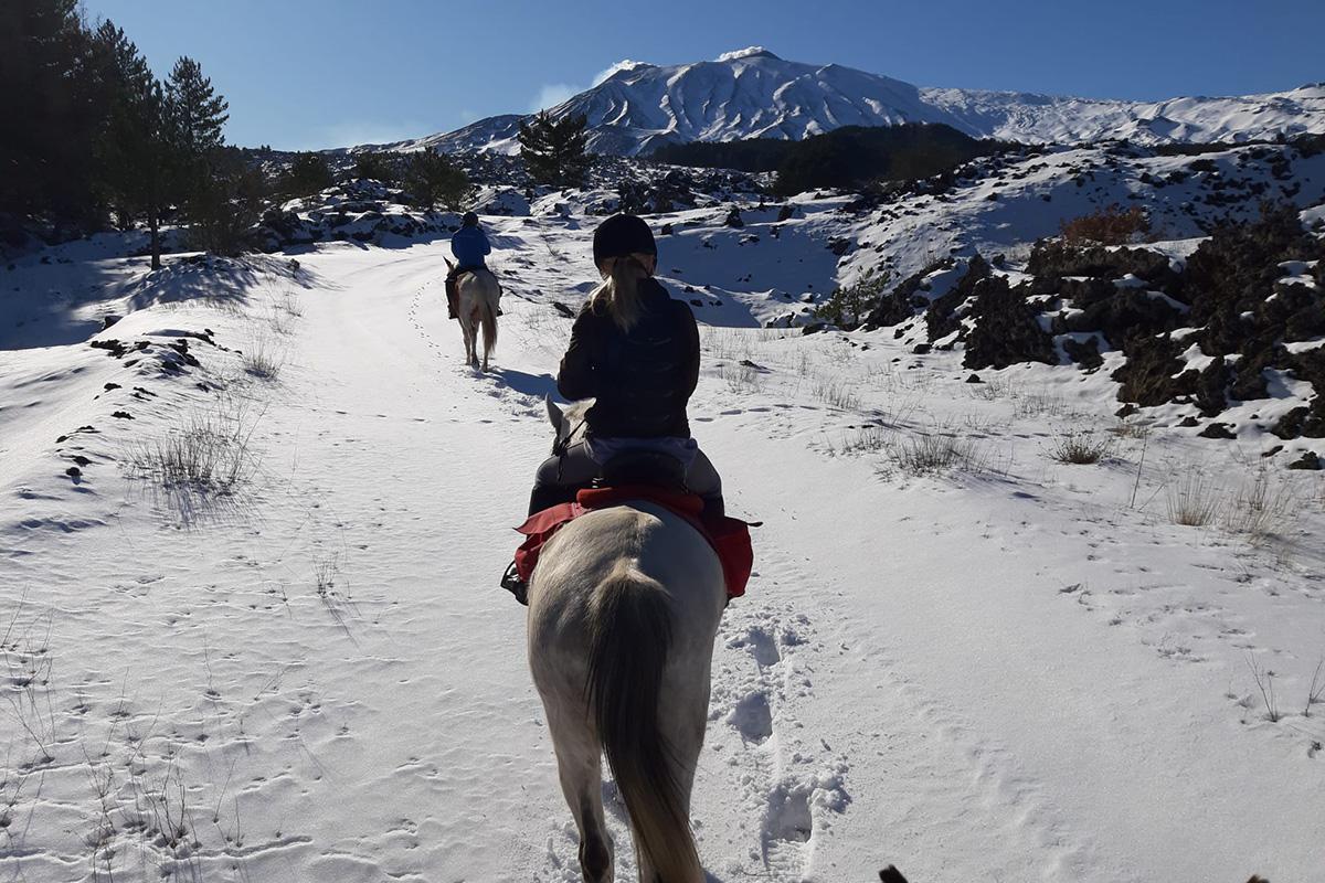 tour-cavallo6