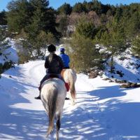 tour-cavallo9